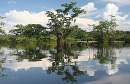 Cuyabeno-River-Amazon-640x416